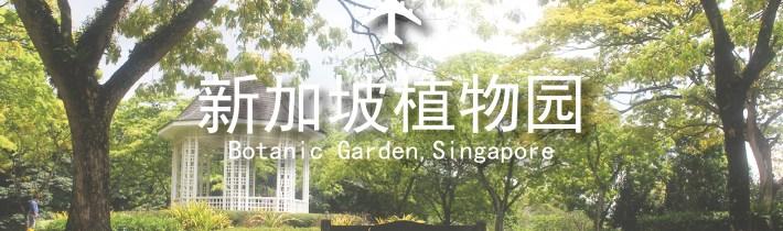 文化遗产 | 城市里的森林。走,到新加坡植物园里踏踏青!