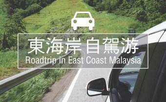 东海岸3号公路自驾 | 关于自驾注意事项、推荐海岸和景点、整体花费等完整攻略
