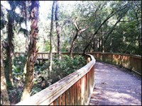 FishHawk Ridge Boardwalk