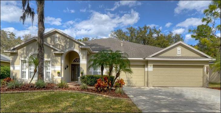 15020 EAGLERISE DR LITHIA 33547, FishHawk Ranch Real Estate, FishHawk Ranch Homes For Sale