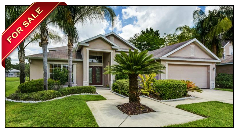 Great Pond View Home For Sale In The Heron Glen Subdivision Of FishHawk Ranch