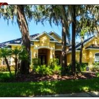 15817 SORAWATER DR, LITHIA, FL 33547, FishHawk Ranch Homes For Sale, FishHawk Ranch Real Estate