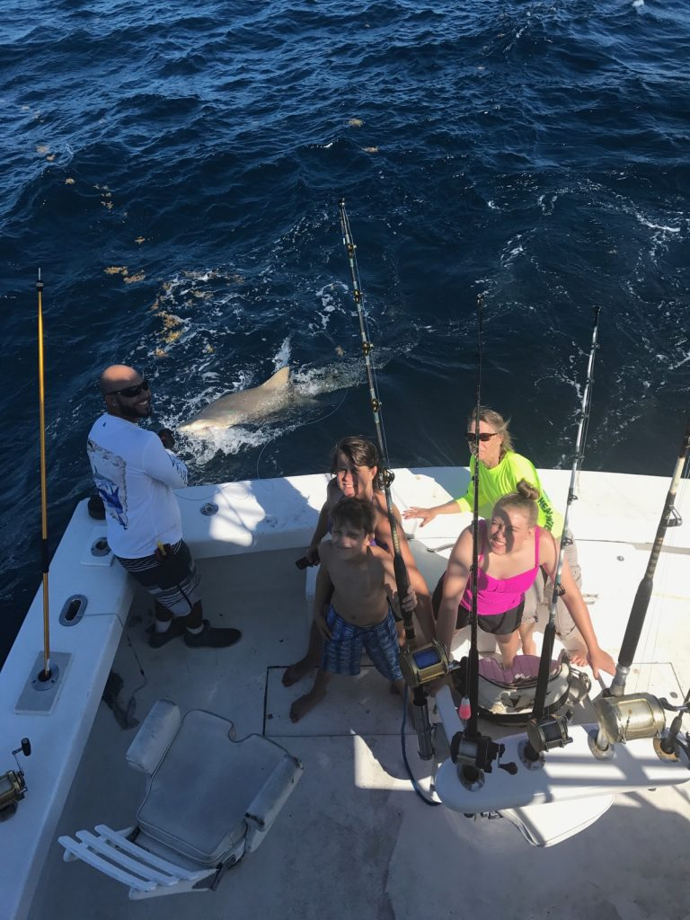 Nice lemon shark next to the boat during our shark fishing charter in Fort Lauderdale
