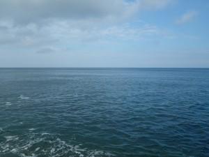 日本海ショアブリ