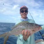 yellowtail snapper