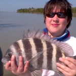 sheepshead florida keys