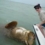 florida keys goliath grouper