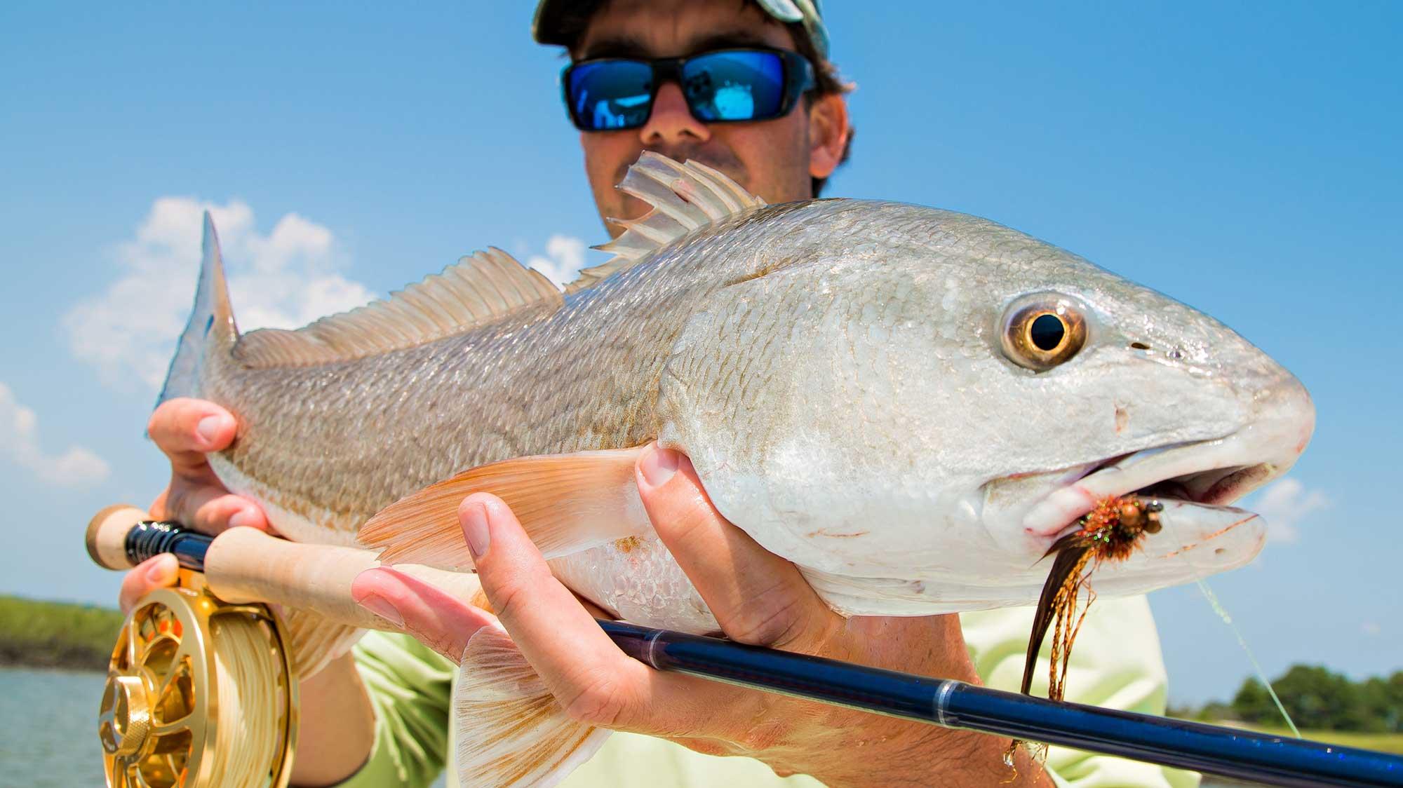 Fishing charter angler holding redfish