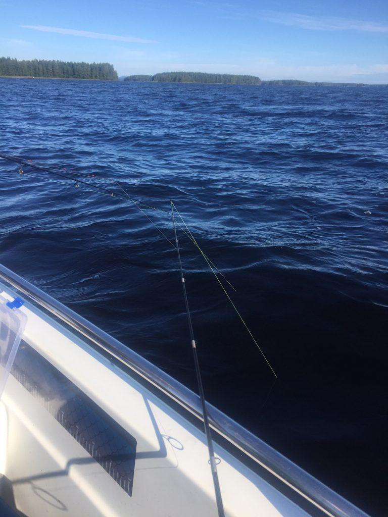 Veneen alla oli kalaa, joten triplayritys käynnissä