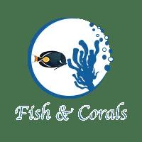 Fish & Corals