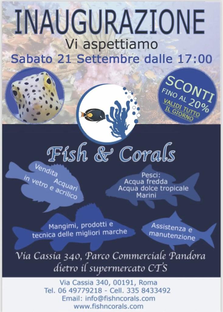 inaugurazione Fish & Corals