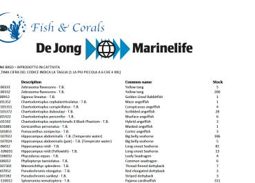 Listino De Jong PDF