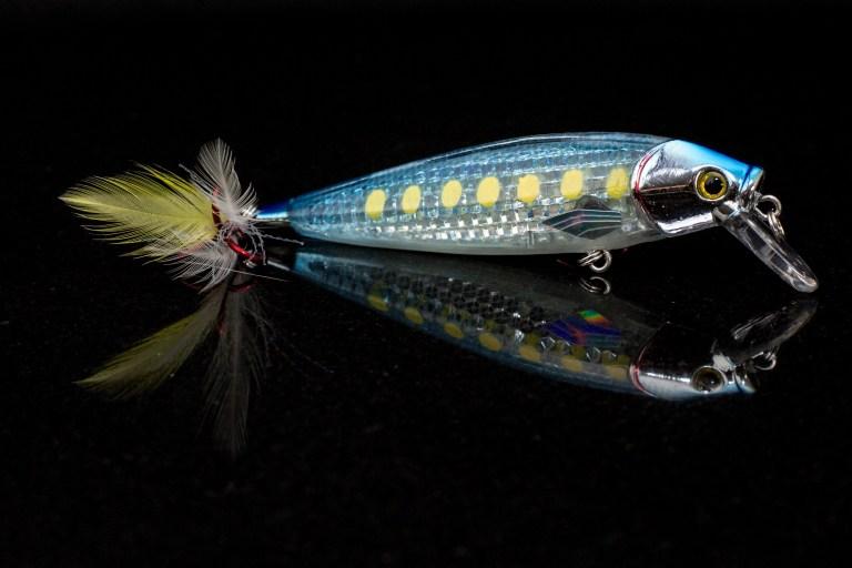 #08 Mackerel