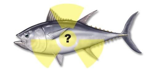 radioactive-bluefin-image