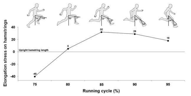 running cycle