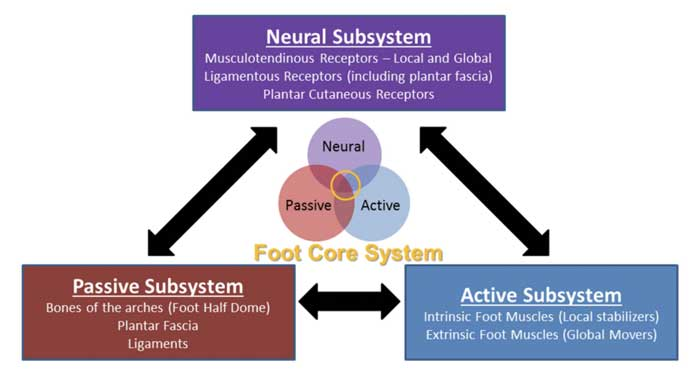 foot core system