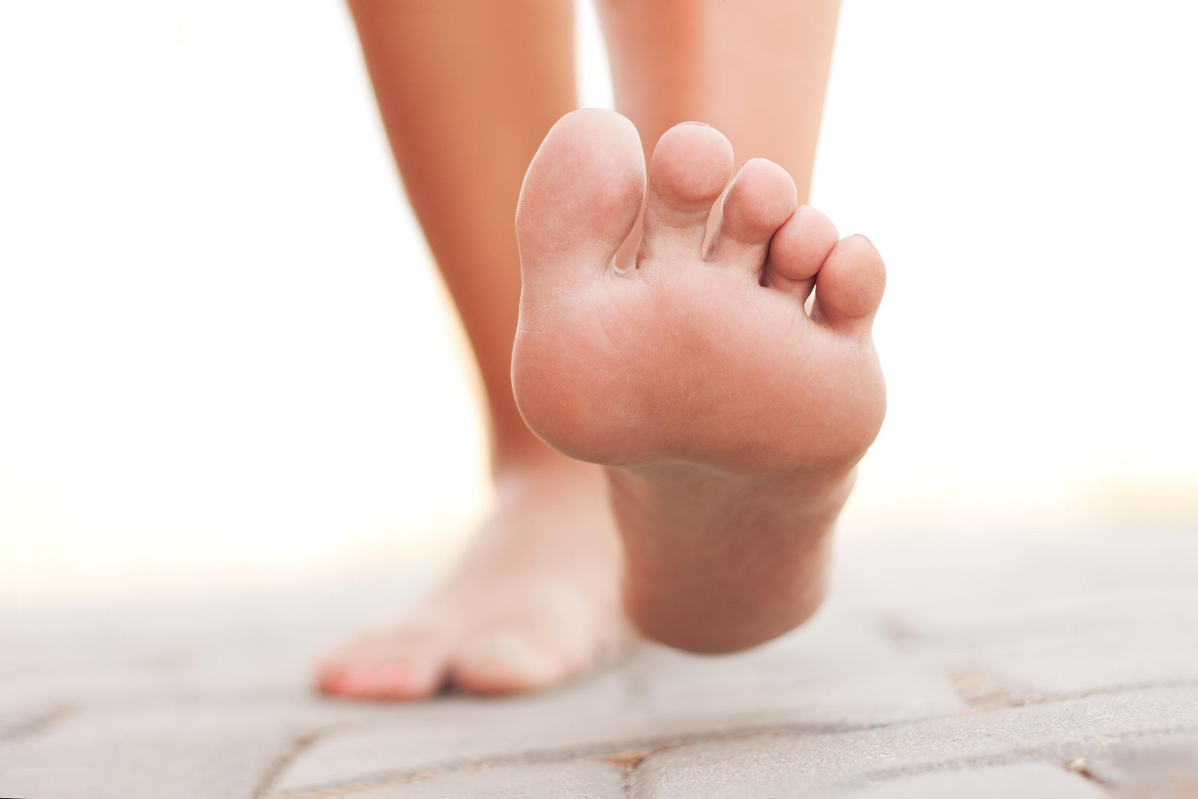 Ruolo dei muscoli intrinseci del piede