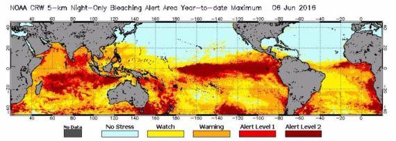 destruccion de los oceanos y fisiomuro04