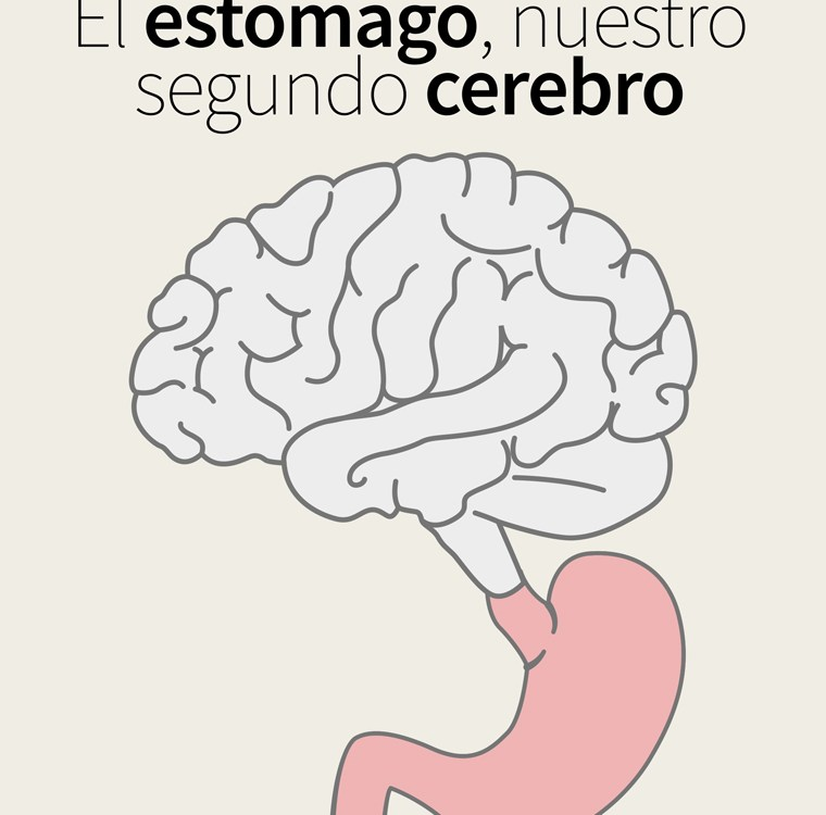 El estómago, nuestro segundo cerebro