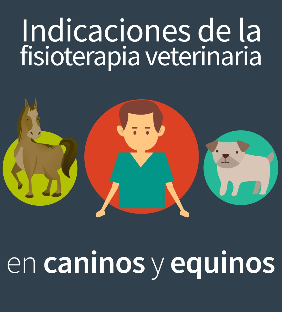 Fisioterapia veterinaria