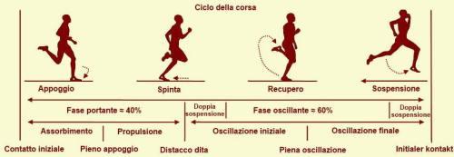 Running Gait Phases Fasi della Corsa Analisi