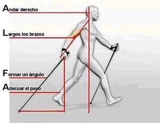 Esquema_de_cómo_hacer_nordic_walking