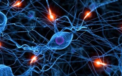 TRATAMIENTO LESIONES NEUROLÓGICAS