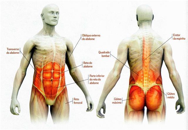 Ejercicios isometricos lumbares y abdominales
