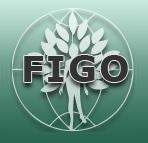 figocolor