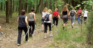 Nordic Walking group slider