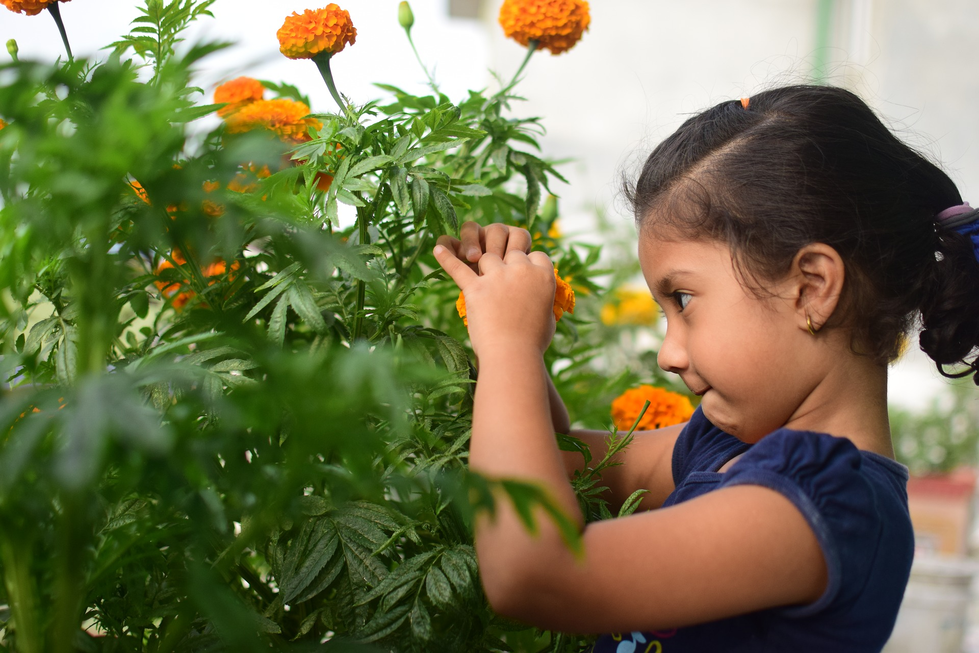 Gardening with kids makes them appreciate patience