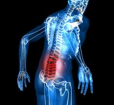 mobility drills lower back pain