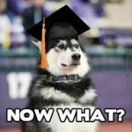 Top 10 things to know Post Graduation