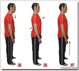 FE Posture Funzug