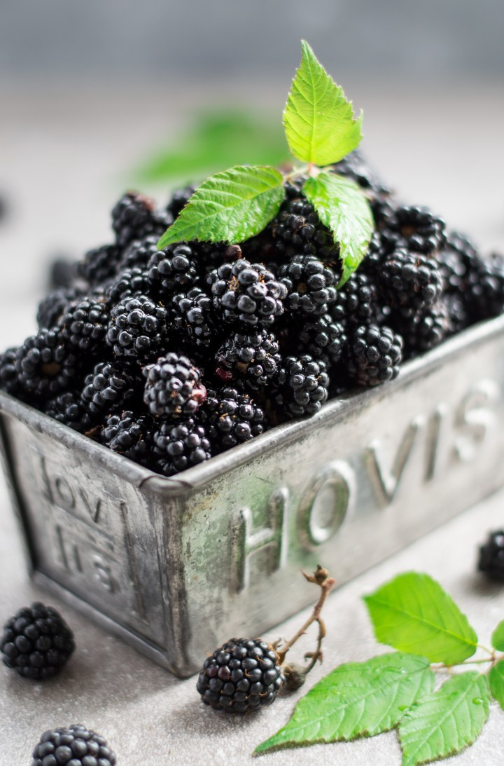 Blackberries in gret tin with mint leaves