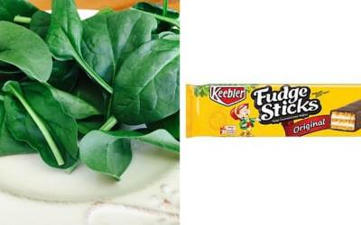 Choosing Spinach When Your Body is Screaming for Fudge Sticks & Other Important Life Saving Tips
