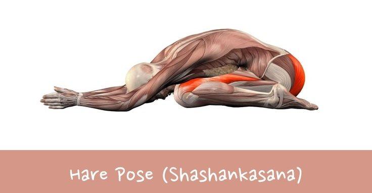 Yoga Poses For Lower Back Pain Relief #4 Hare Pose (Shashankasana)