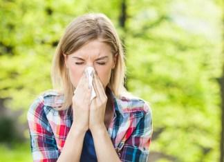 alimenti anti allergie
