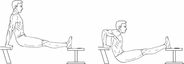 triceps bench dips