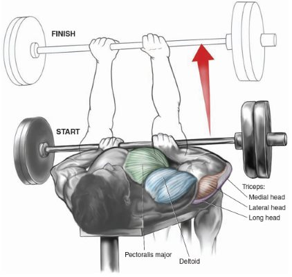 close-grip-bench-press