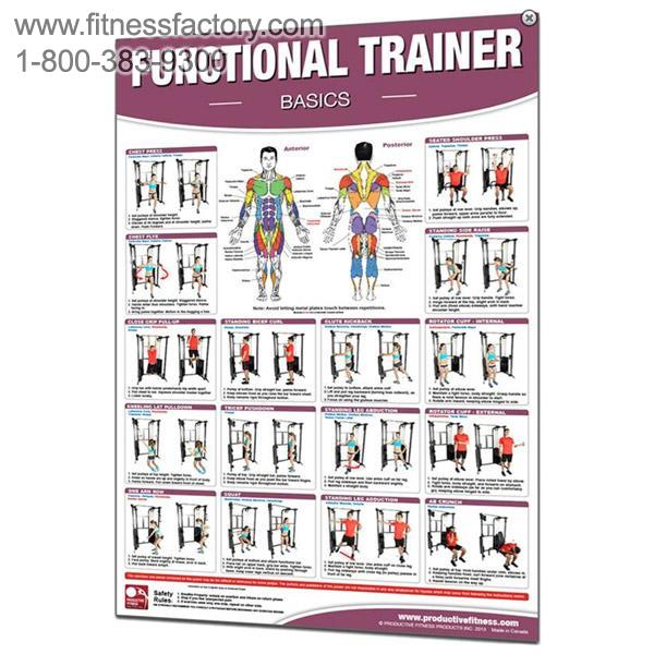 Functional Trainer Exercises Laminated Poster