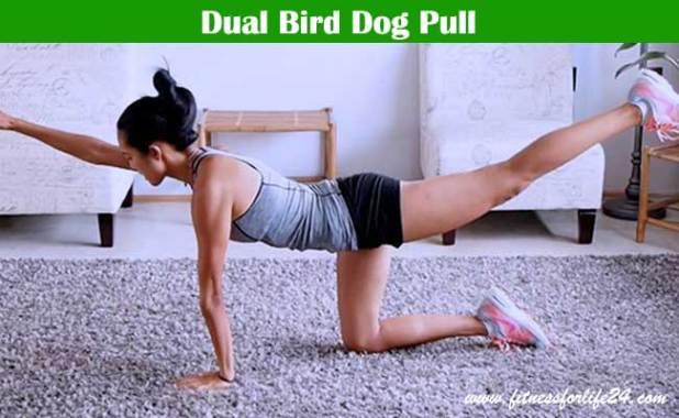 Dual Bird Dog Pull
