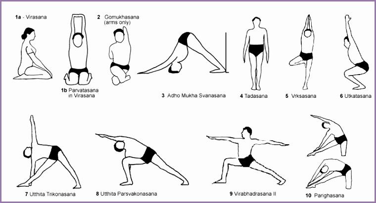 Iyengar Yoga Poses For Beginners 438800xskpan Luxury