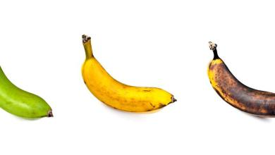 Photo of Some incredible facts about the ripe and unripe bananas