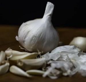 Natural Appetite Suppressants - Garlic