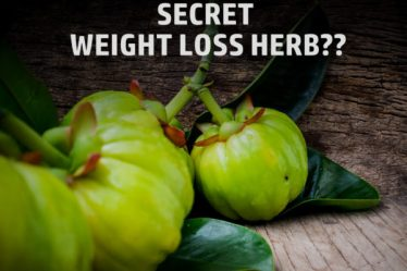Does Garcinia Cambogia for Weight Loss works