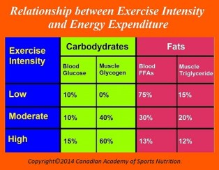 Relationship beween Exercise Intensity and Energy Expenditure - Fitness HN