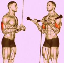 Increase Intensity of Your Workouts - Add Super Sets