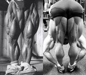 Fitness HN - Deadlifts Can Give You Better Legs