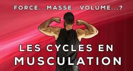 Cycles de force, masse, volume : un moyen de se motiver à court terme
